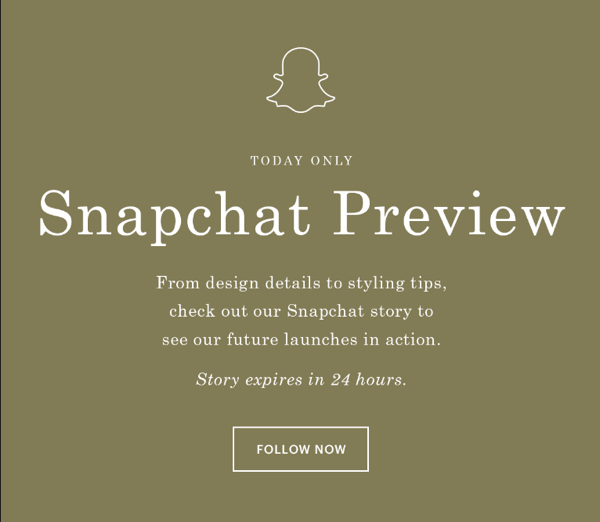 cg-everlane-email-about-snapchat-story